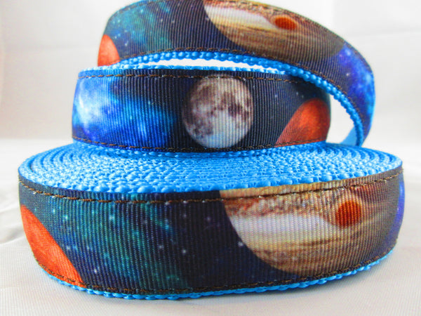 "3/4"" Galactic Neighbors Leash - Penny and Hoover's Pig Pen"