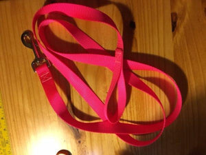 "3/4"" Hot Pink Nylon Leash - Penny and Hoover's Pig Pen"