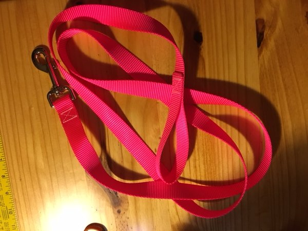 "1"" Hot Pink Nylon Leash - Penny and Hoover's Pig Pen"