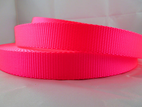 "1"" Hot Pink Nylon Dog Collar - Penny and Hoover's Pig Pen"
