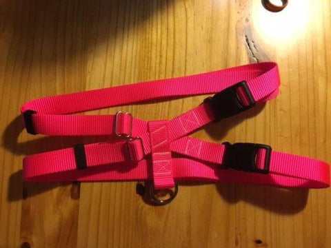 "1"" Hot Pink Nylon Pig Harness - Penny and Hoover's Pig Pen"