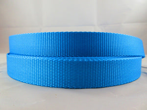 "1"" Ice Blue Nylon Leash - Penny and Hoover's Pig Pen"