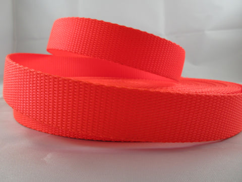 "1"" Neon Orange Nylon Dog Collar - Penny and Hoover's Pig Pen"