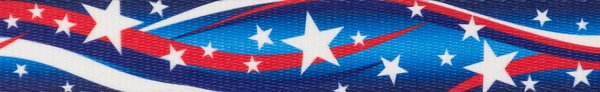 "5/8"" Star Spangled Dog Collar - Penny and Hoover's Pig Pen"
