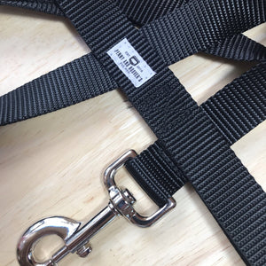 "1"" Black Nylon Leash"
