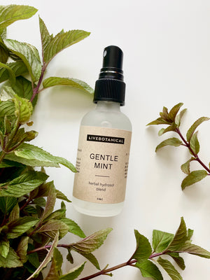 Gentle Mint Herbal Hydrosol Blend