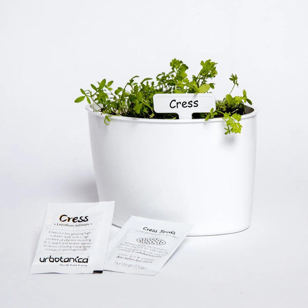 Packet of Cress Seeds