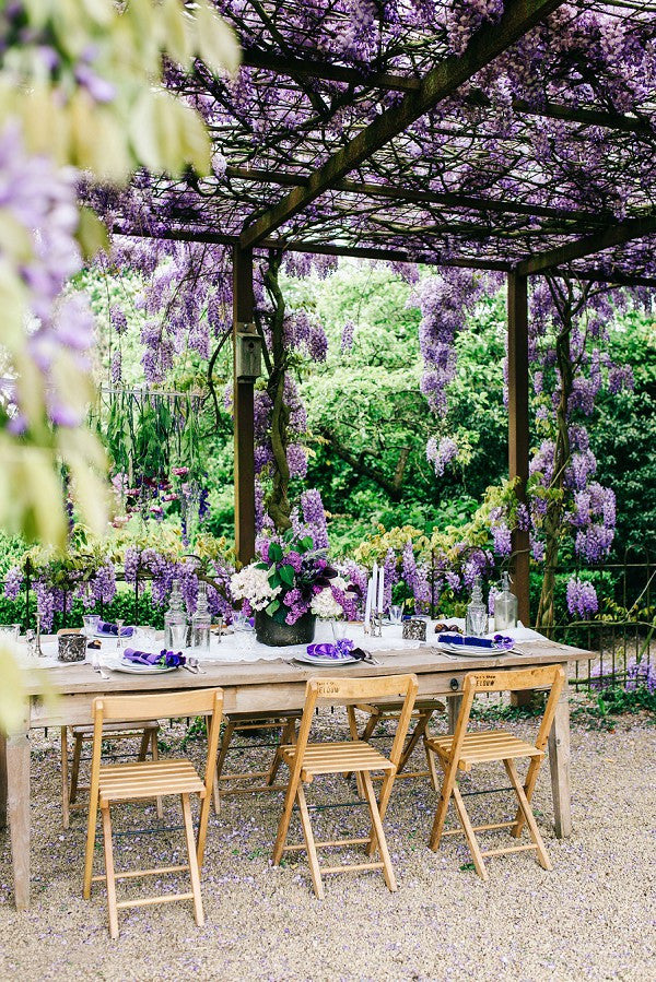 wisteria hanging flowers picture perfect backdrop for wedding all oc. Black Bedroom Furniture Sets. Home Design Ideas