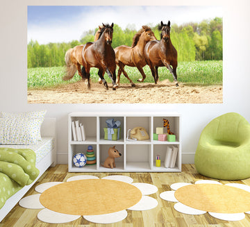 All the Brown Horses - Half Wall Mural