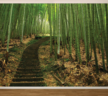 Bamboo Path - Full Wall Mural