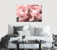 Coral Peony - Canvas