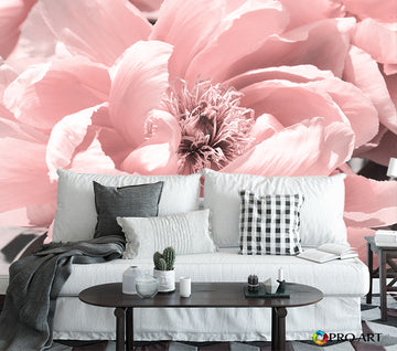 Coral Peony - Full Wall Mural