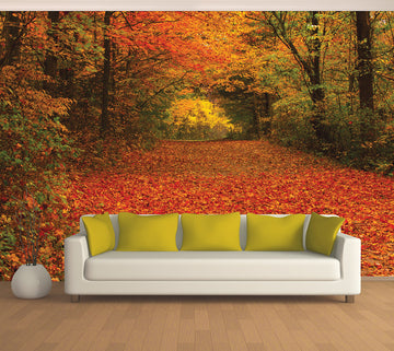 Fall Tunnel - Full Wall Mural