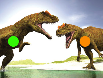Dino Fight 1050 x 800 Fun Shoot Target
