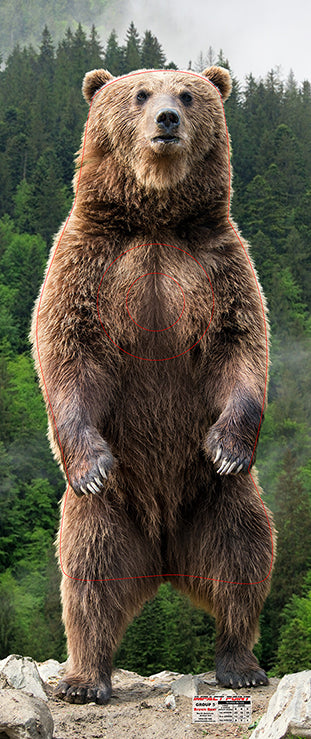 Group 5 - Brown Bear Target - North American Set 1