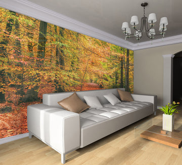 Nature's Beauty - Full Wall Mural