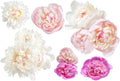 Peony Collection 1