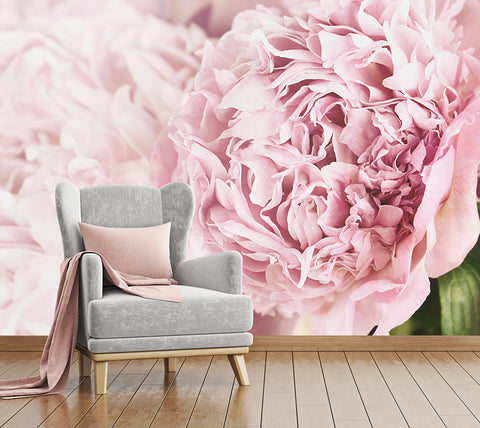Pink Posy - Full Wall Mural