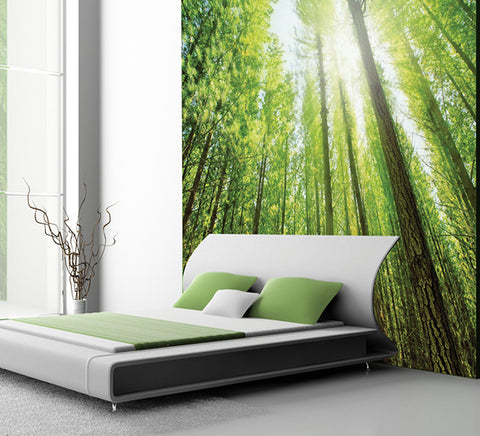 Tree Tops - Full Wall Mural