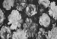 Vintage Bouquet Black & White - Full Wall Mural