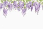 Wisteria - Full Wall Mural