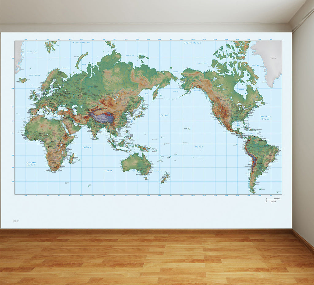 World map full wall mural gumiabroncs Gallery