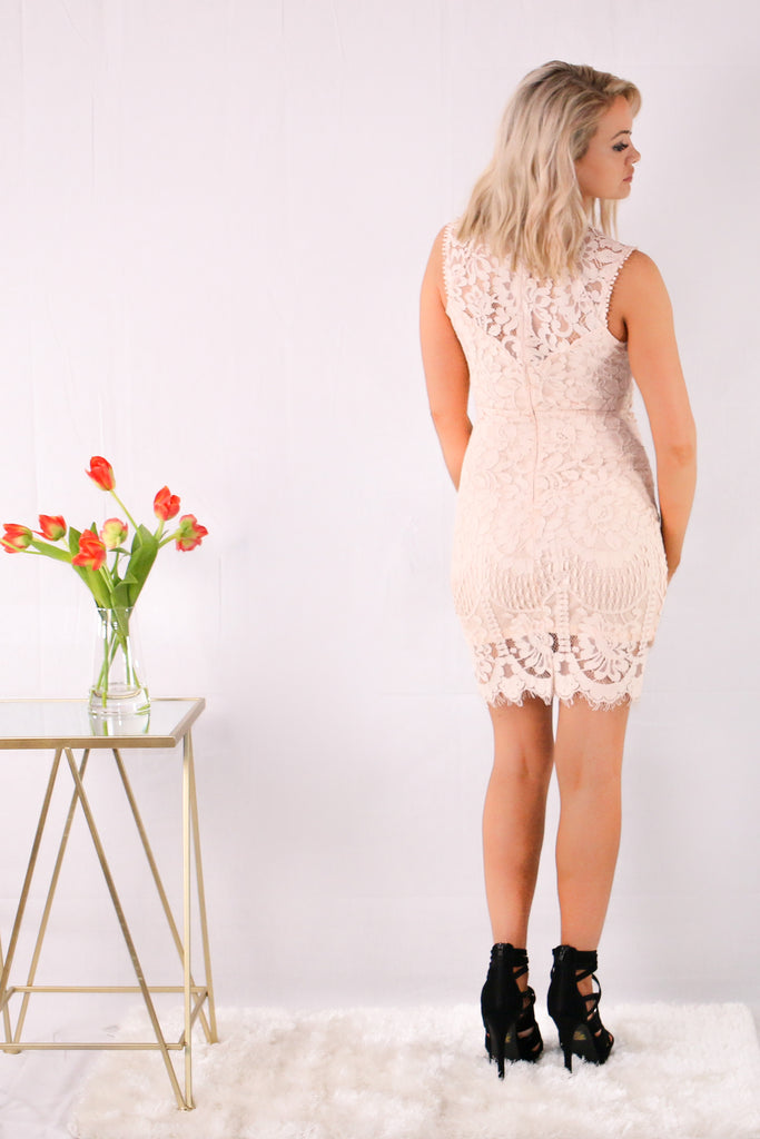 Pink Sleeveless Lace Sheath Dress with Floral Detail Back View