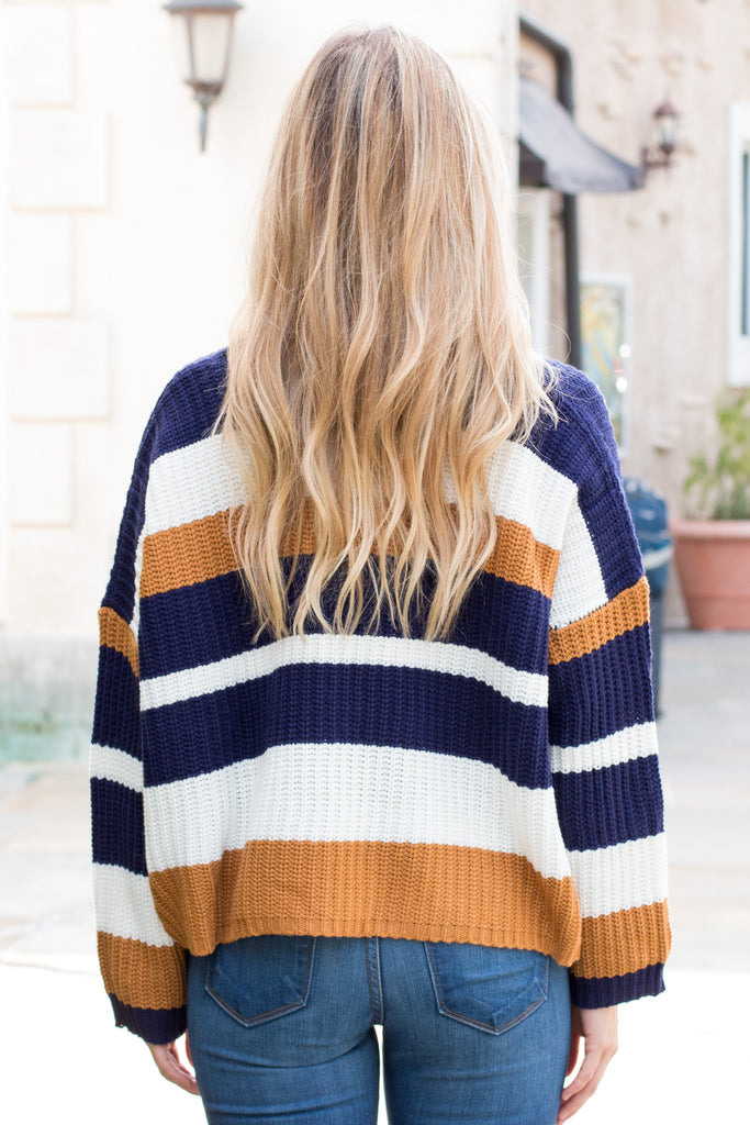 Mainstrip Striped Crop Sweater in Navy/Camel Back Closeup