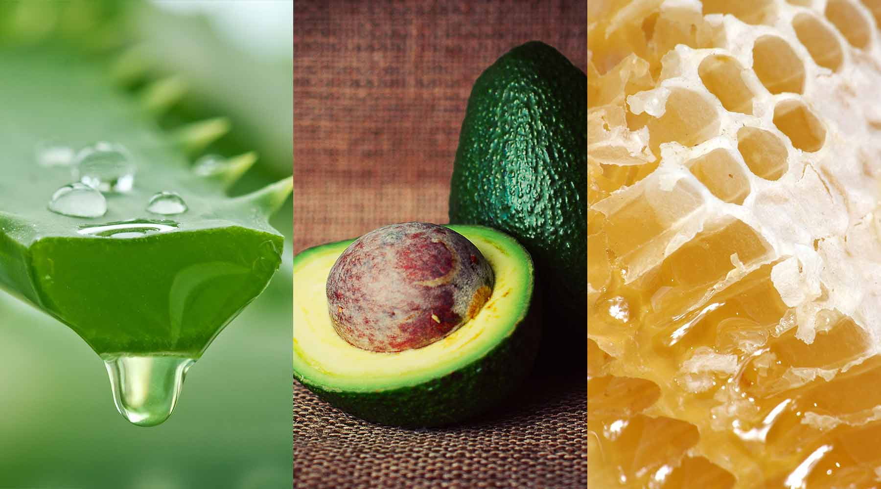 Best natural ingredients for healthy, strong and shiny hair
