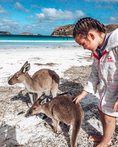 Swoodi swim towels at the beach with a kangaroo at Lucky Bay Western Australia