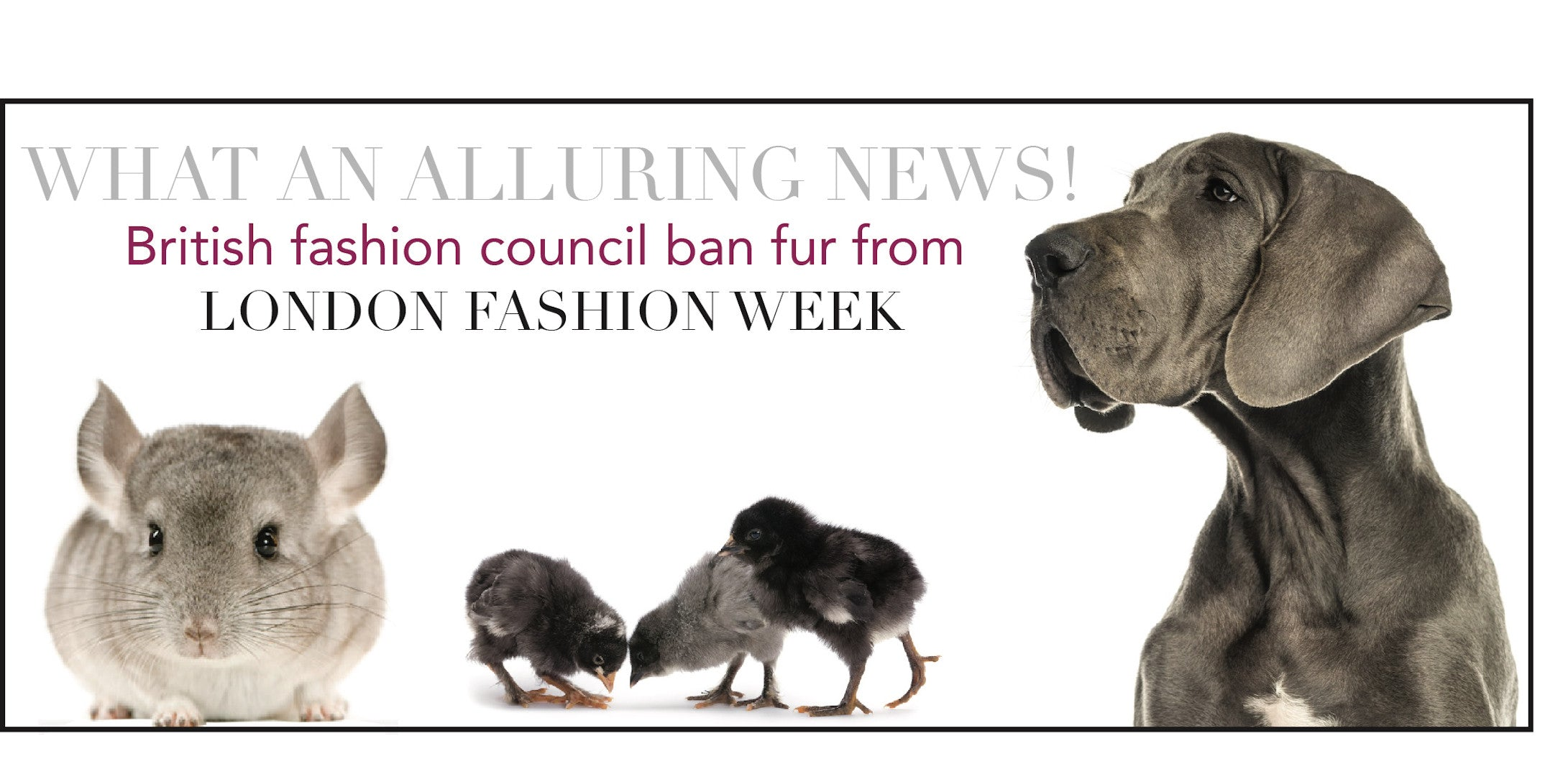 FUR IS OUT OF FASHION