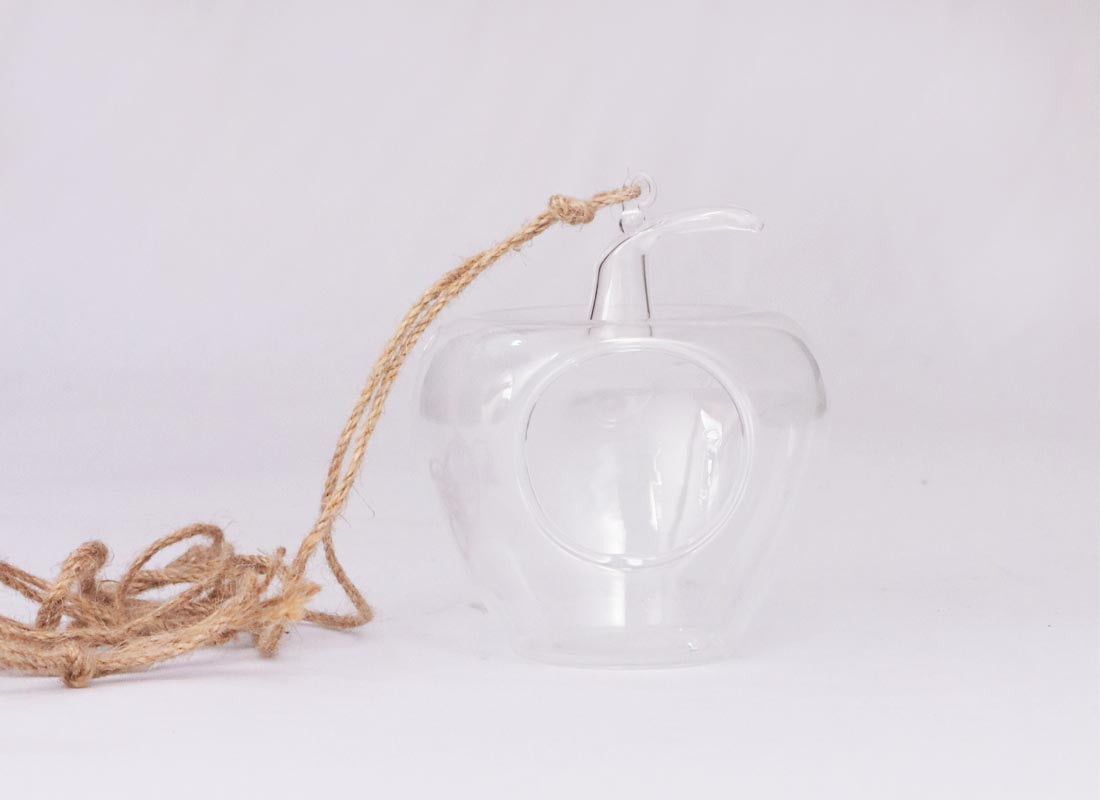Apple Shape Terrarium Hanging Décor