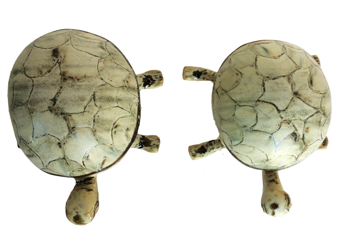 Good luck Turtle Showpiece Set of 2