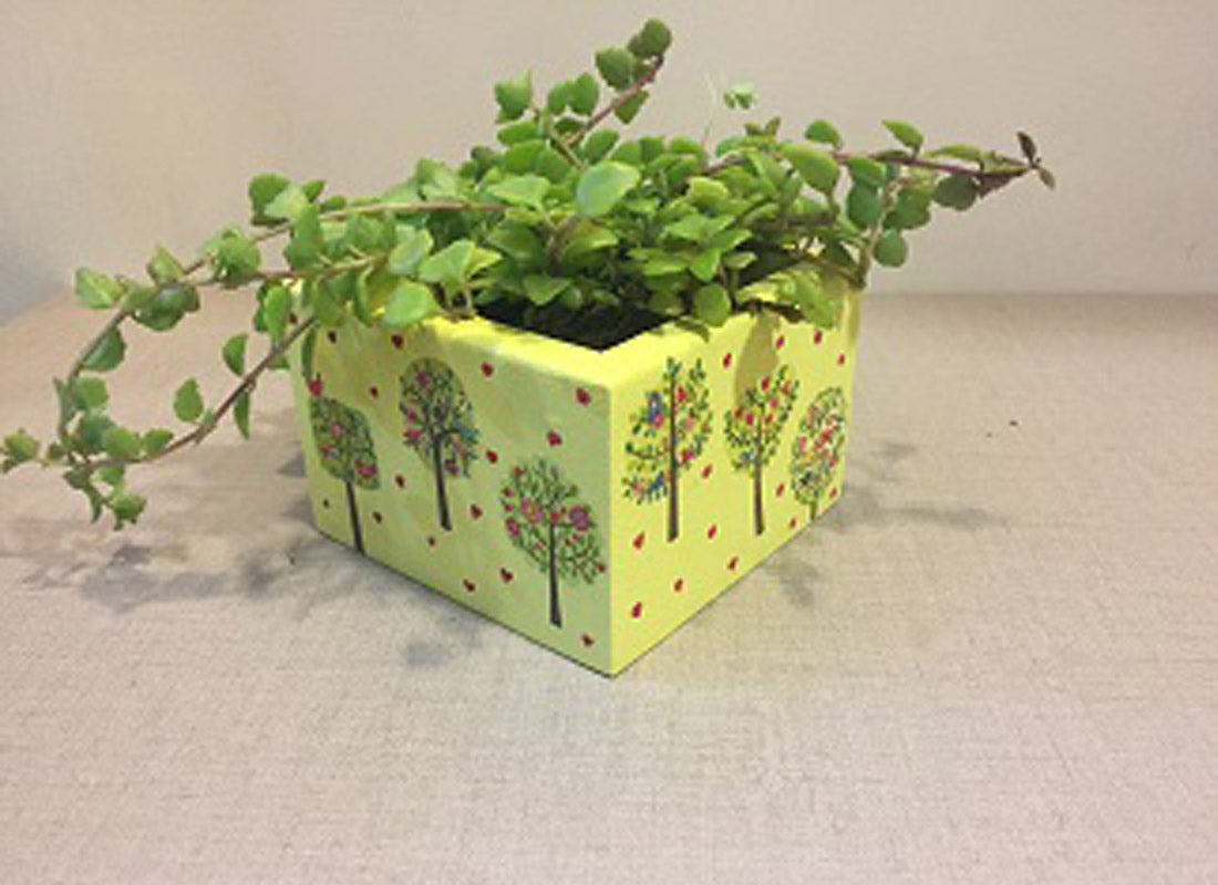 Hand Painted Yellow Wooden Box Planter