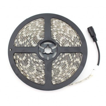 Striscia LED 12V DC 30 LED/m 5m IP65