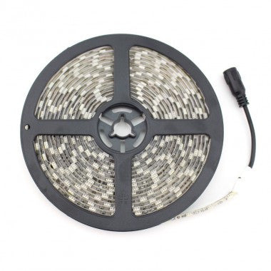 Striscia LED 12V DC 60 LED/m 5m IP65