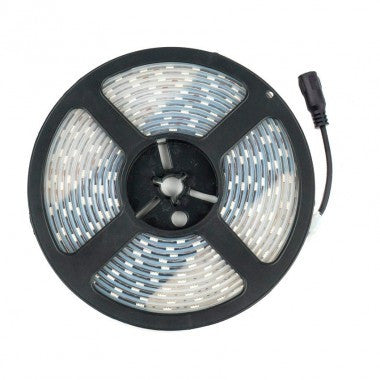 Striscia LED 12V DC 60 LED/m 5m IP67