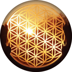 Flower of Life Communication with the Divine