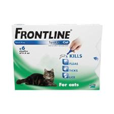 Frontline Spot on for cats (6 x Pipette)