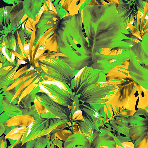 19173 Tropical leaves©