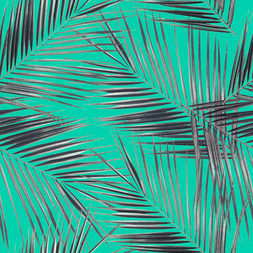 18133 - Palm leaves©