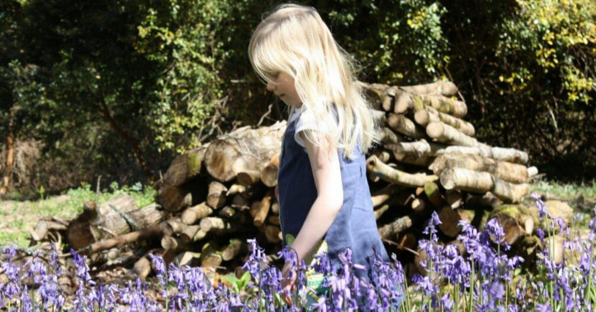 The Best Places To Find Bluebells In Cornwall