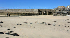 Breakwater Beach St Ives Cornwall - A Dog Friendly Beach