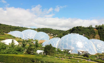 The Eden Project - A Big Day Out In Cornwall