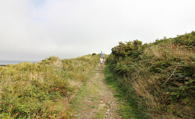 10 Lovely Walks Around St Ives Cornwall