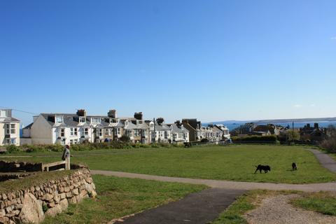 Ayr Dog Walking Field St Ives Cornwall