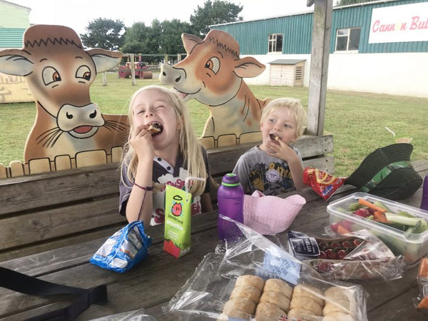 Dairyland Farm World Newquay Cornwall Picnic Lunch