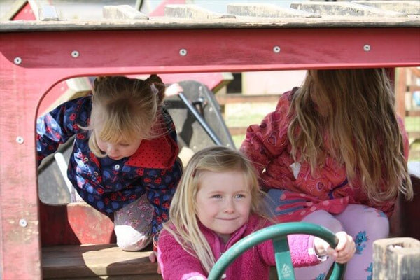 Paradise Park Play On Tractor