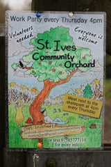 Penbeagle Park St Ives Cornwall - Community Orchard Poster