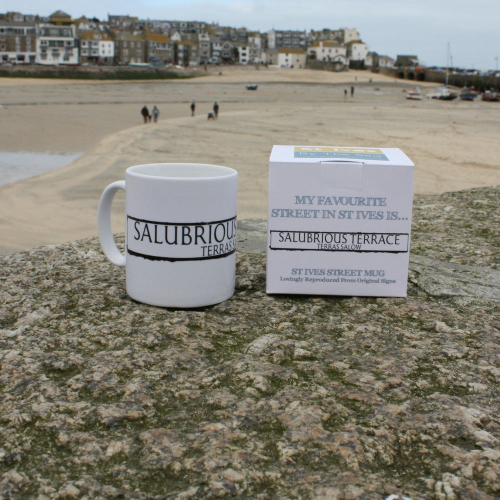 salubrious terrace st ives cornwall street sign mug and box